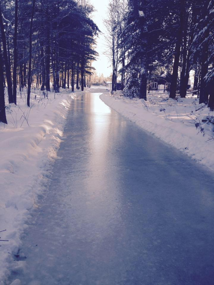 sentiers patinage foret